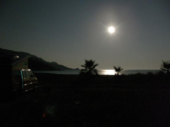 T4 au clair de Lune